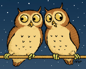 Two owls hooting